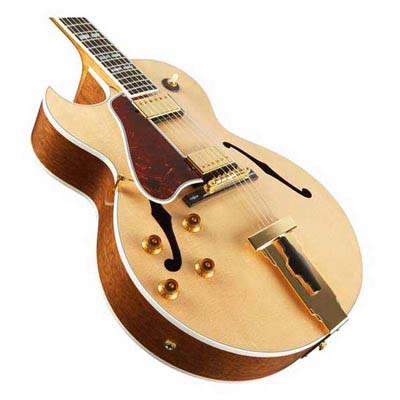 Archtop Hollow Body Electric Guitar