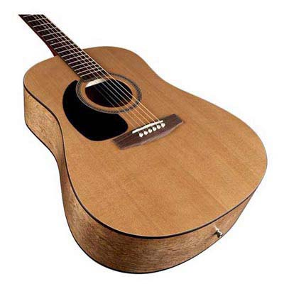 Seabird Acoustic Guitar
